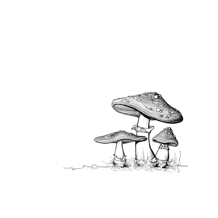 Original (mushrooms)
